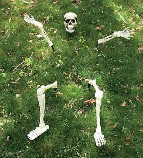 esqueletos-en-halloween-hearthsong