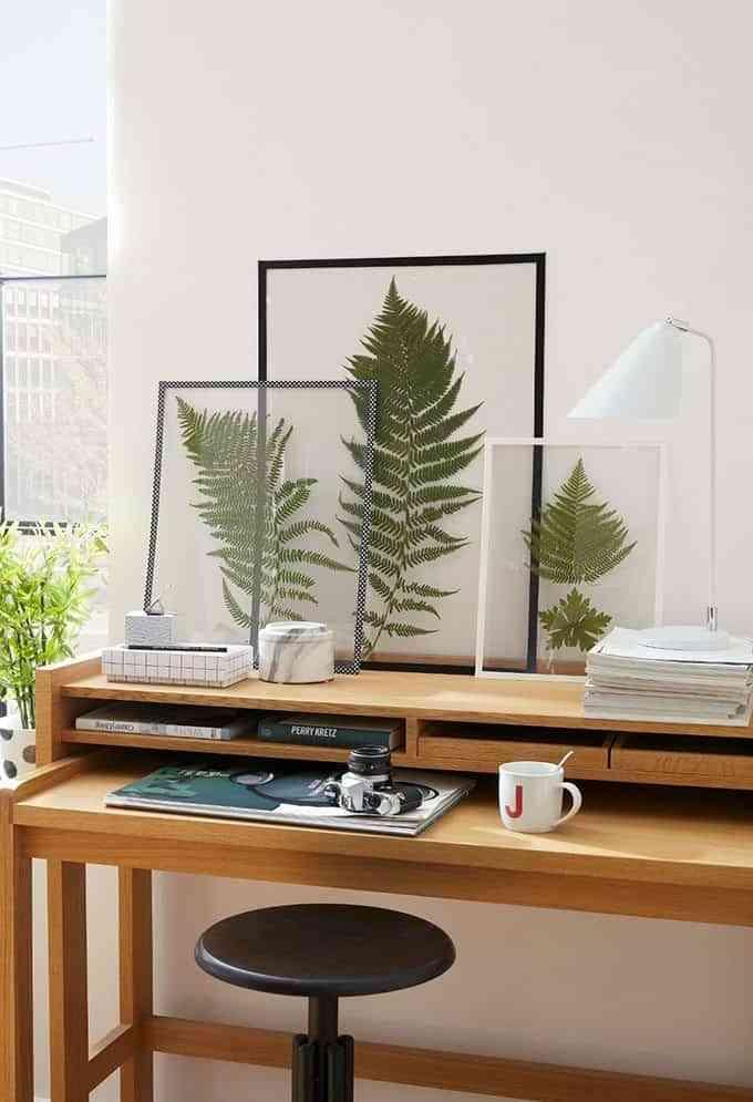 atmosfera-serena-y-equilibrada-westwing-plantas