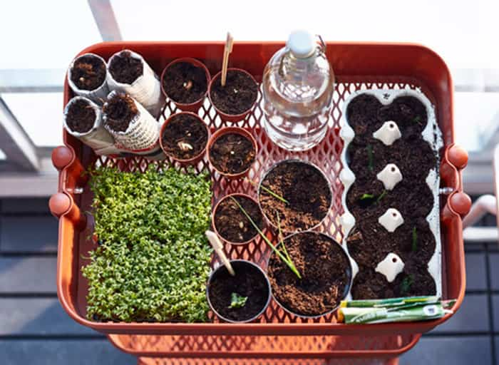 Chill decoraci n ideas geniales para cultivar plantas y - Mesa cultivo ikea ...