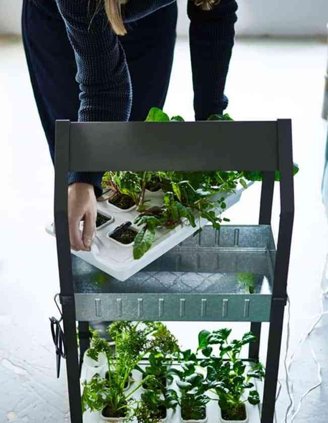 Ideas geniales para cultivar plantas y hortalizas en un huerto en casa - Huerto en casa ikea ...