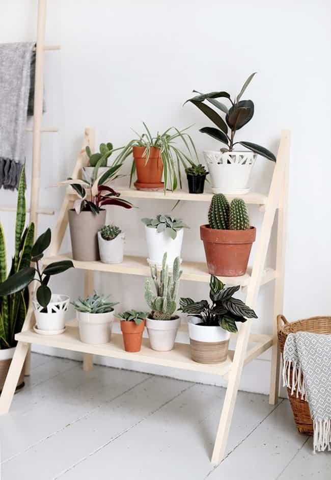 Diy Cómo Construir Un Soporte Para Plantas Con Forma De Escalera