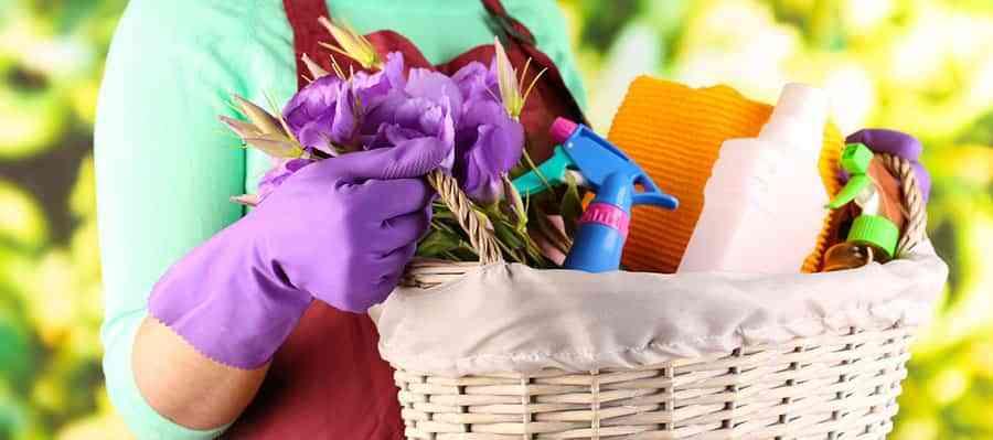 Resultado de imagen para limpieza de primavera