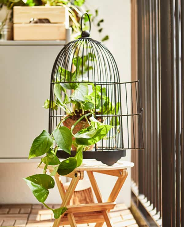 Ideas pr cticas y decorativas para colocar las plantas en - Jaulas decorativas ikea ...