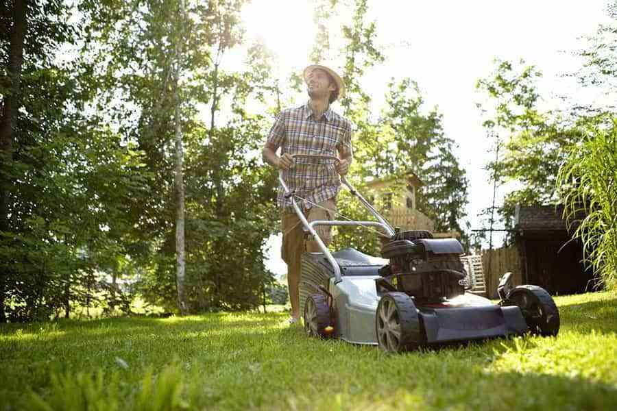 Cómo cuidar el césped de tu jardín para que esté perfecto en verano