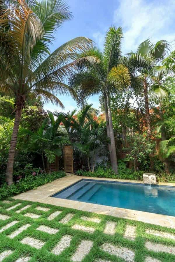 Cómo elegir los mejores árboles y plantas para ajardinar la piscina