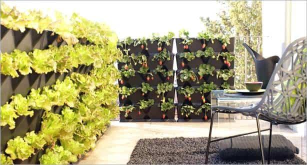 Huerto urbano - mini gardens