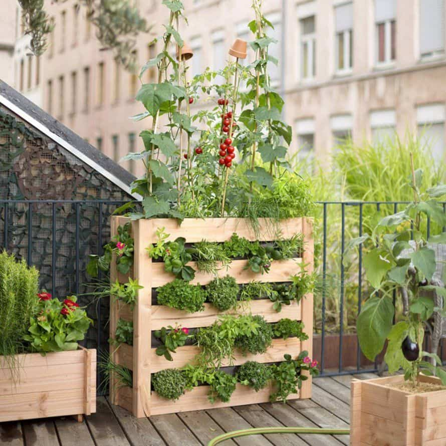 Urban garden with wooden containers