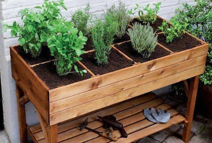 Huerto urbano - mesas de cultivo
