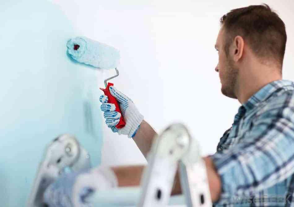 operación pintura