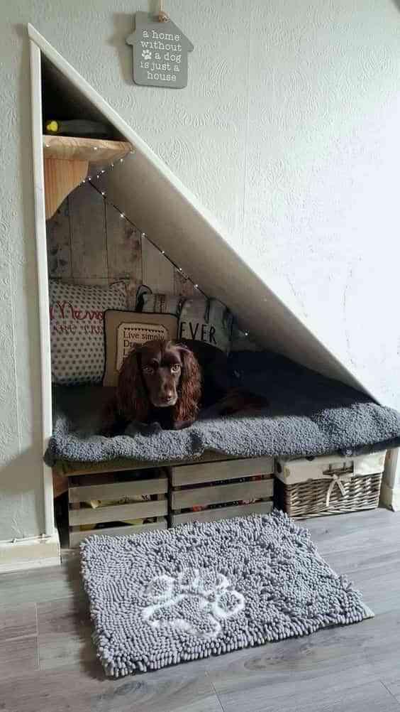 diseno interior para mascotas V