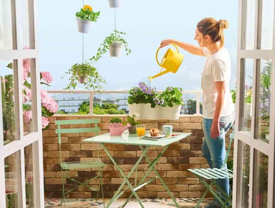 mantenimiento de la terraza