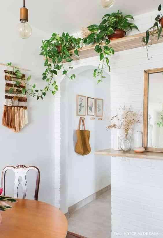 decorar con plantas colgantes III
