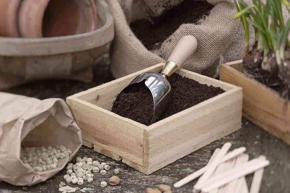 Jardinería fácil en casa, ¡disfruta y relájate!