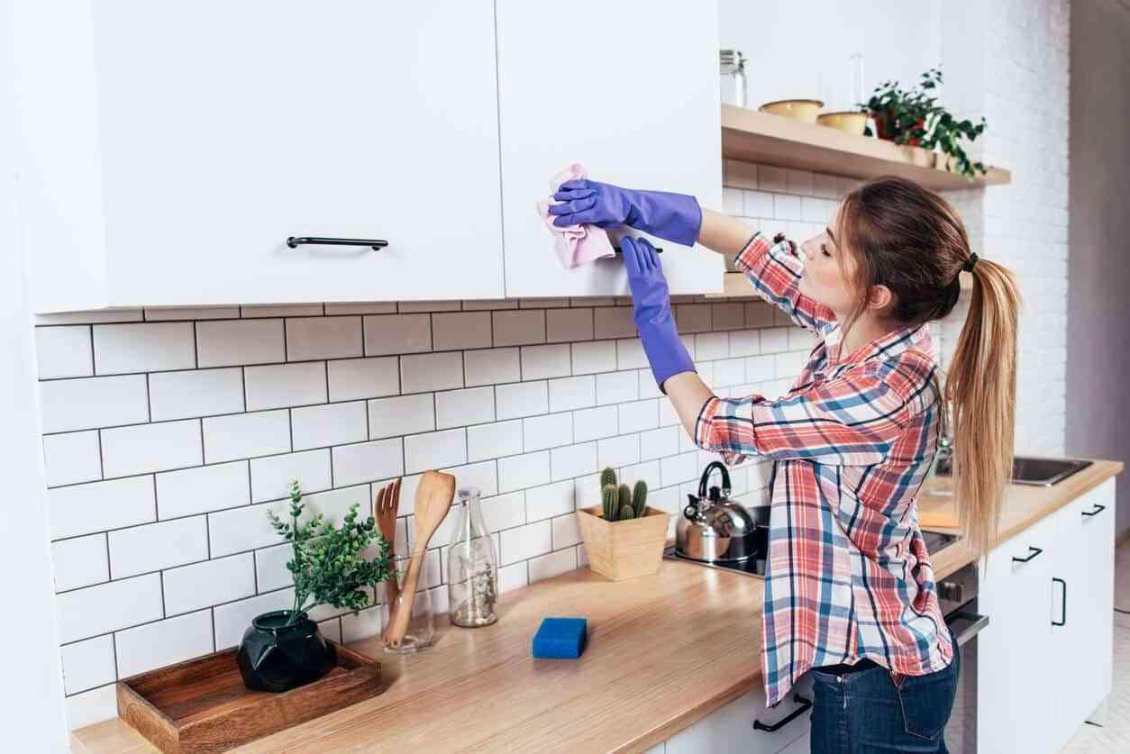 habitos de higiene saludable en casa III