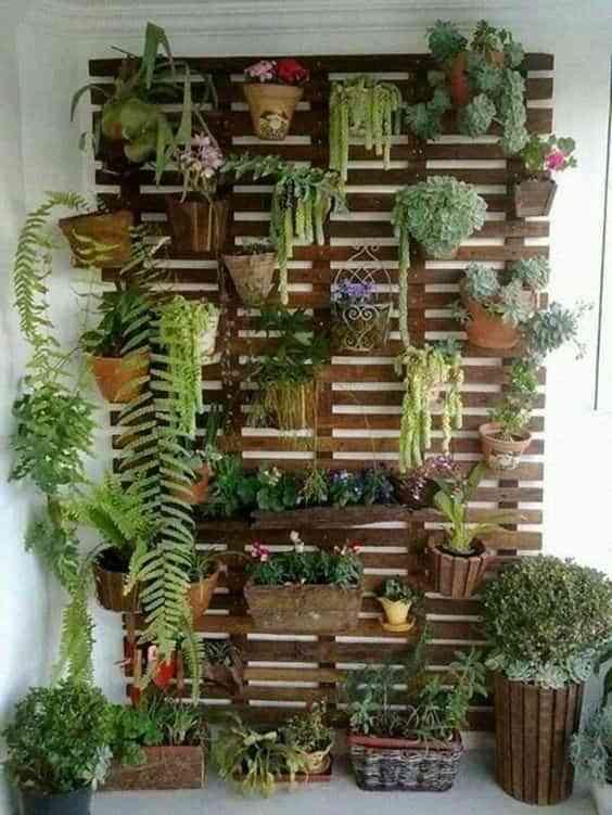 balcón con encanto, pared con plantas