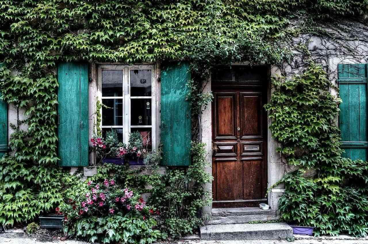 fachadas con plantas