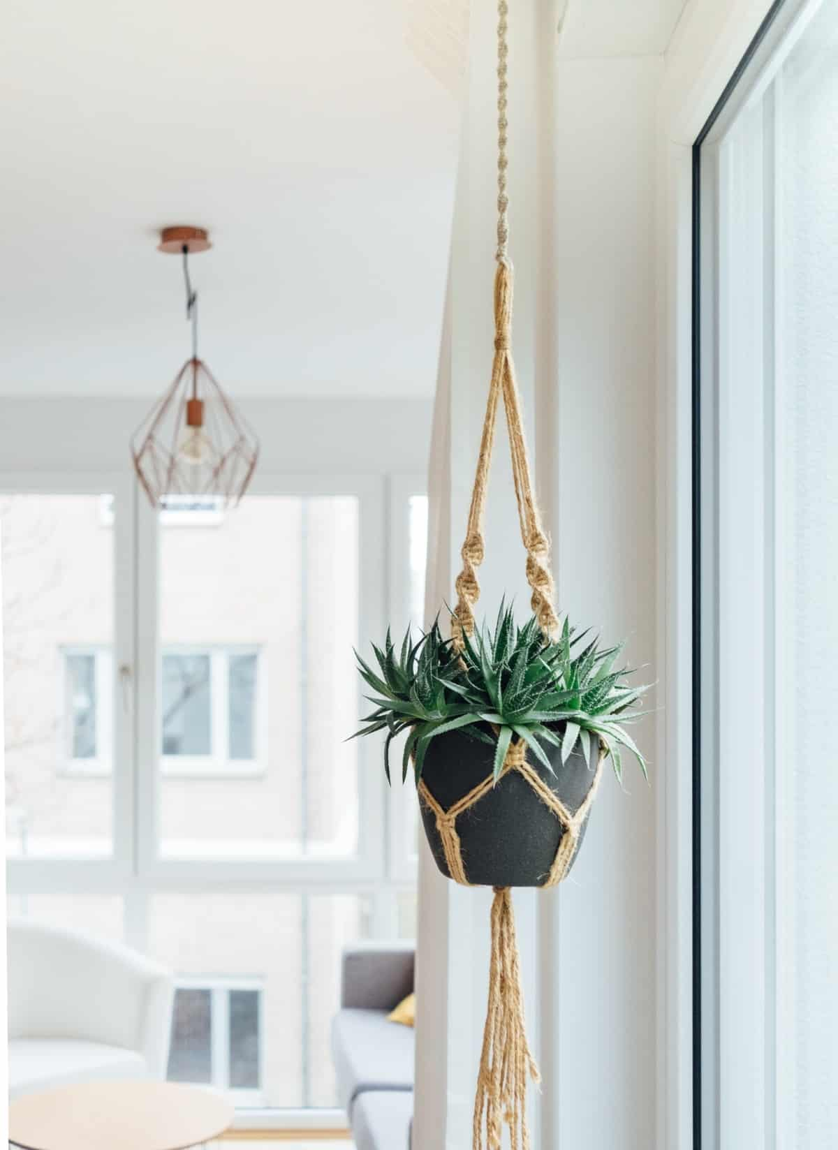 decorar con plantas y macrame