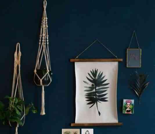pared decorada con plantas y macrame