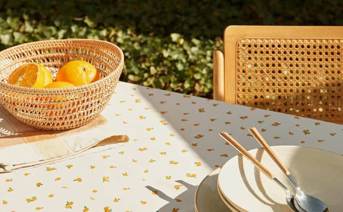 picnic zara home