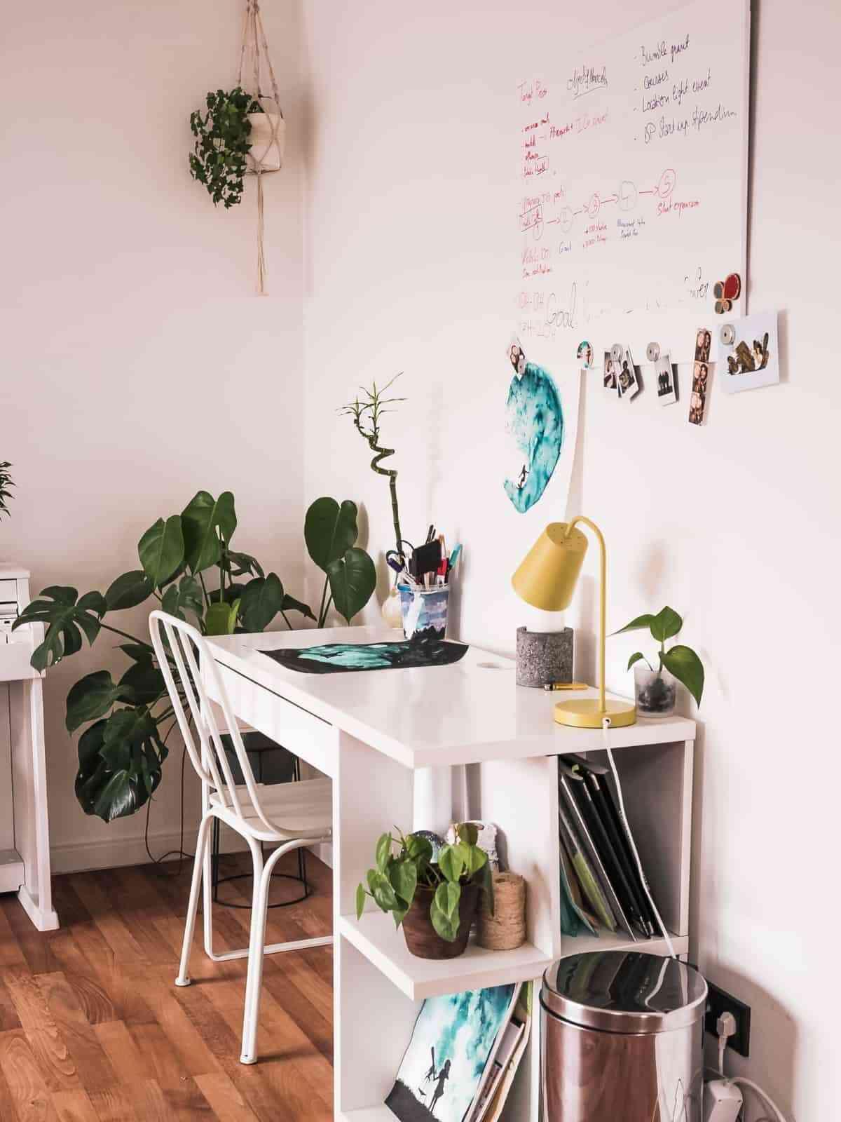 plantas y macrame para decoracion