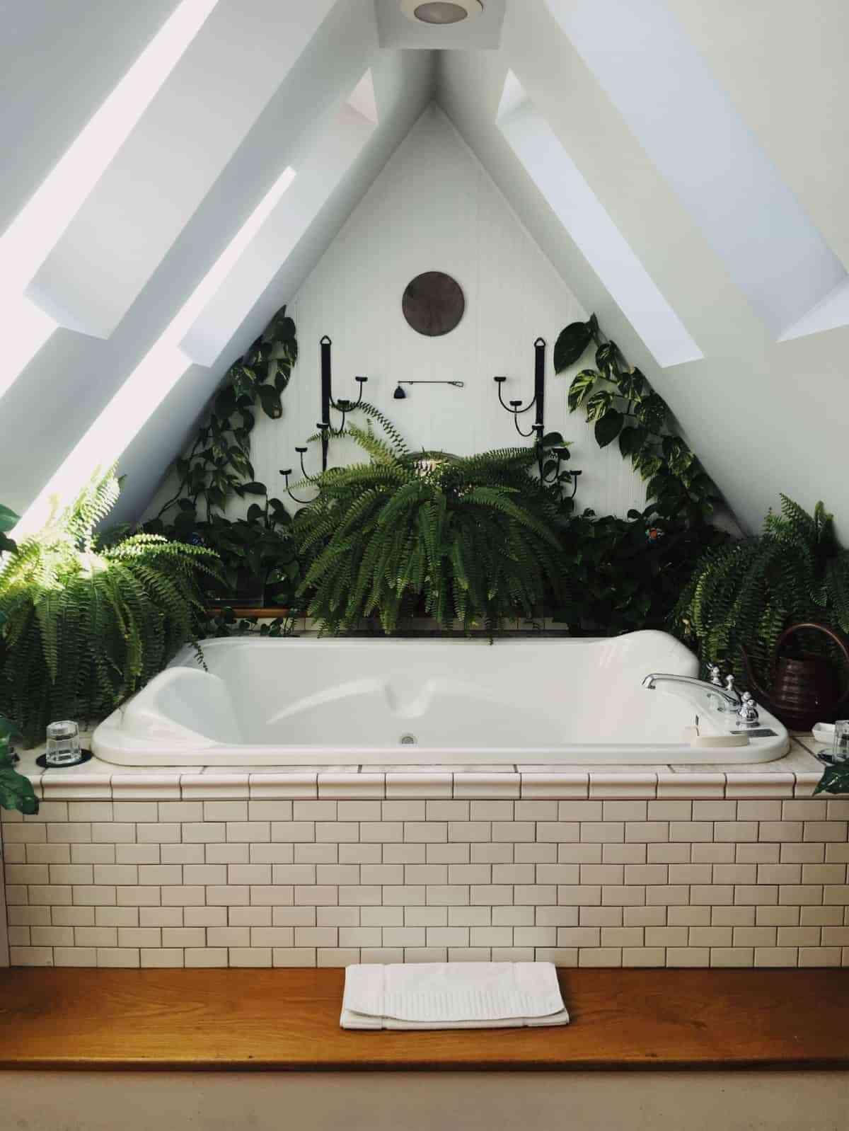 interiorismo vegetal en casa