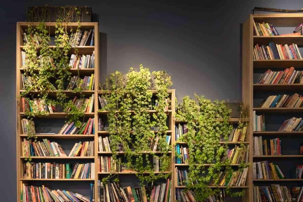 interiorismo vegetal salon