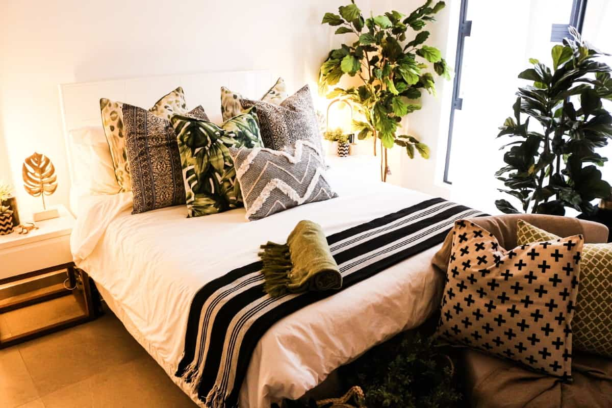 plantas verdor dormitorio