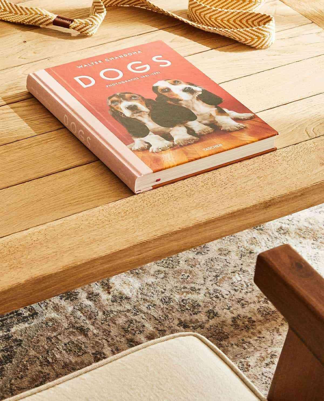 coleccion mascotas zara home libro sobre perros