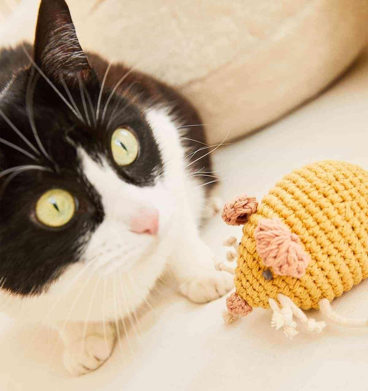 juguetes de zara home para mascotas