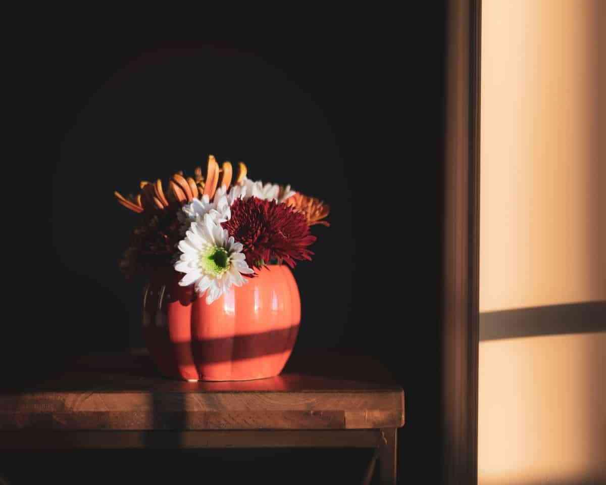 calabazas con flores en un jarron