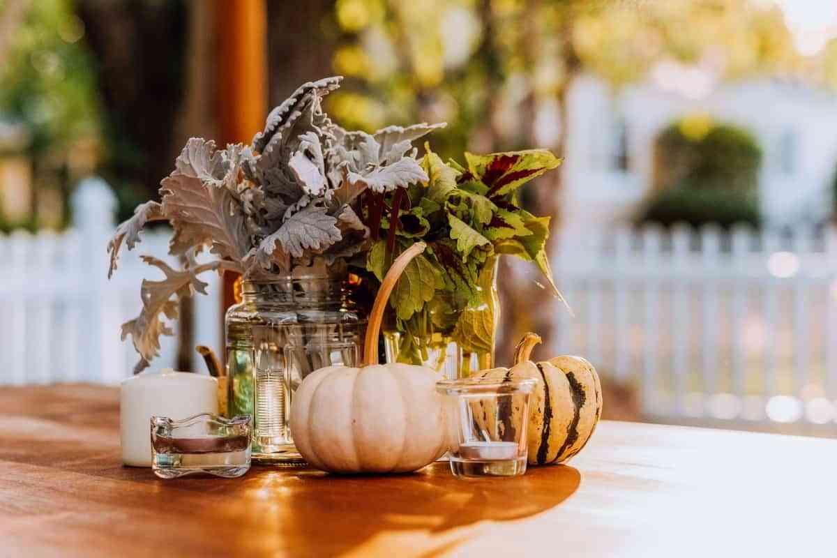 preciosas calabazas para decorar otoño