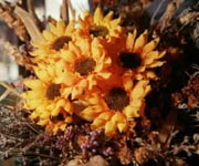 Centro de mesa flores
