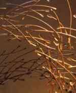creativ-light1