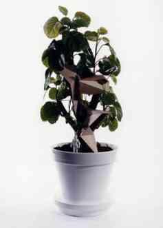 arquitectura en tus plantas 1 taf