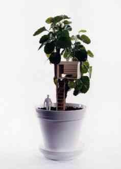 arquitectura en tus plantas 2 taf