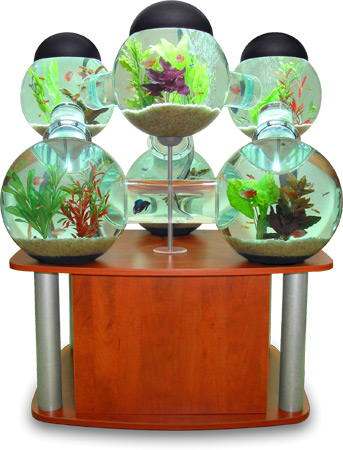 acuario opulent items