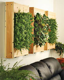 plantas en la pared opulent items