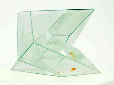 infinity_aquarium.jpg