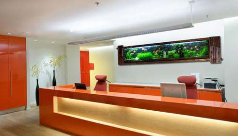 office-pic.jpg
