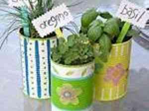 tin_can_herb_pots_1224720109_300x225