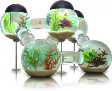 Un acuario decorativo y original 1