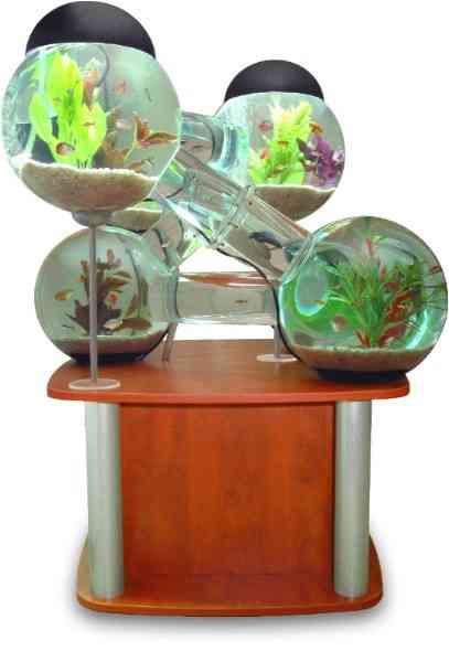 Un acuario decorativo y original 2