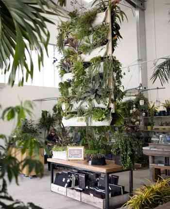 bolsas_plantas_macetas_decoracion (3)
