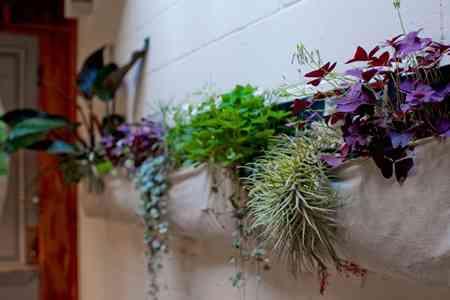 bolsas_plantas_macetas_decoracion (5)