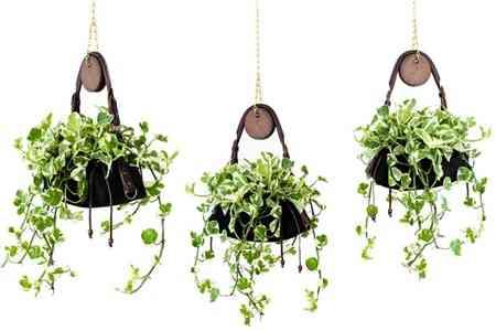 bolsas_plantas_macetas_decoracion (6)
