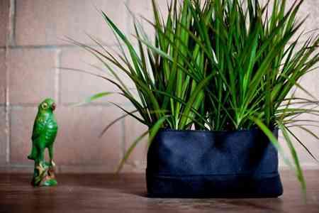bolsas_plantas_macetas_decoracion (7)