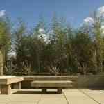 Decorando jardines con Earth Designs 6