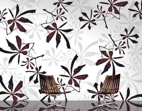 Papeles florales para tus paredes 6
