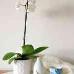 20 imágenes que inspiran a la hora de decorar tu hogar 22