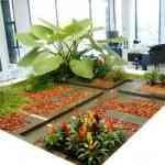 Jardinia: la solución para tu jardín 3